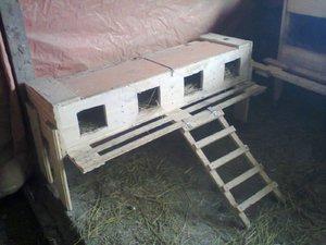 Гнездо для кур несушек своими руками чертежи