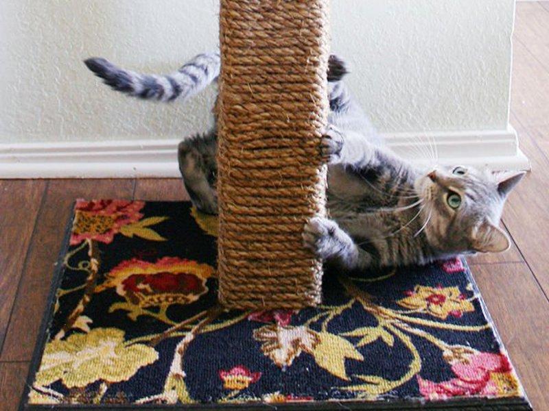 Домик когтеточка для кошек