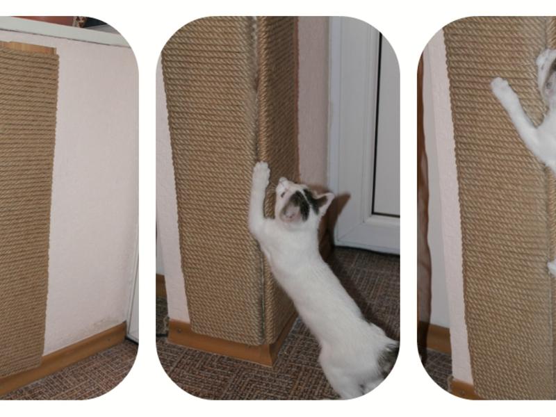 Когтеточки для вашей кошки