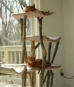 Что понадобится для создания кошачьего домика