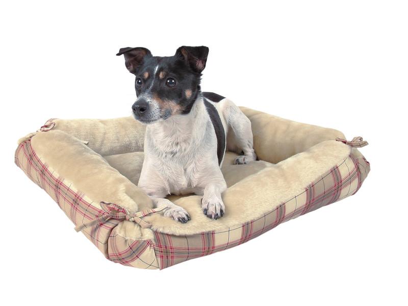Виды форм лежанок для собак