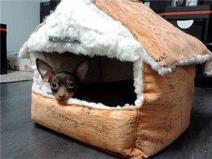 Преимущества лежанок-домиков для собак