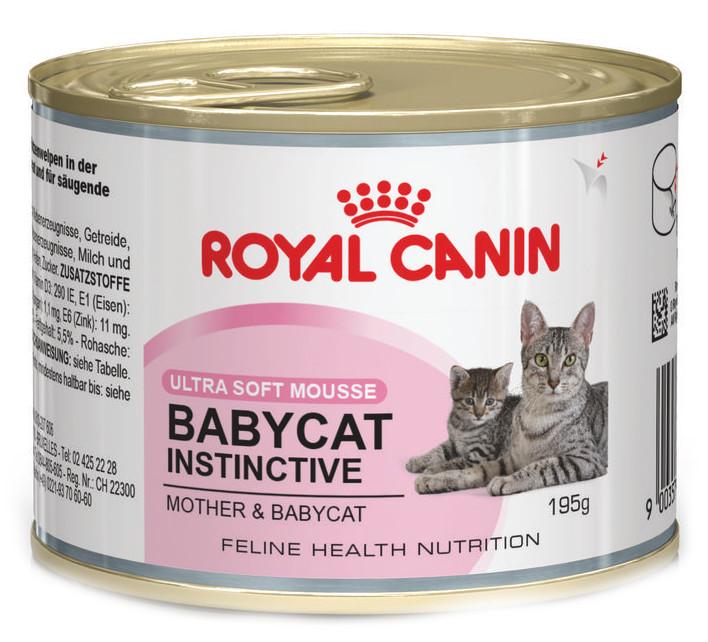 Кошачий корм Royal Canin