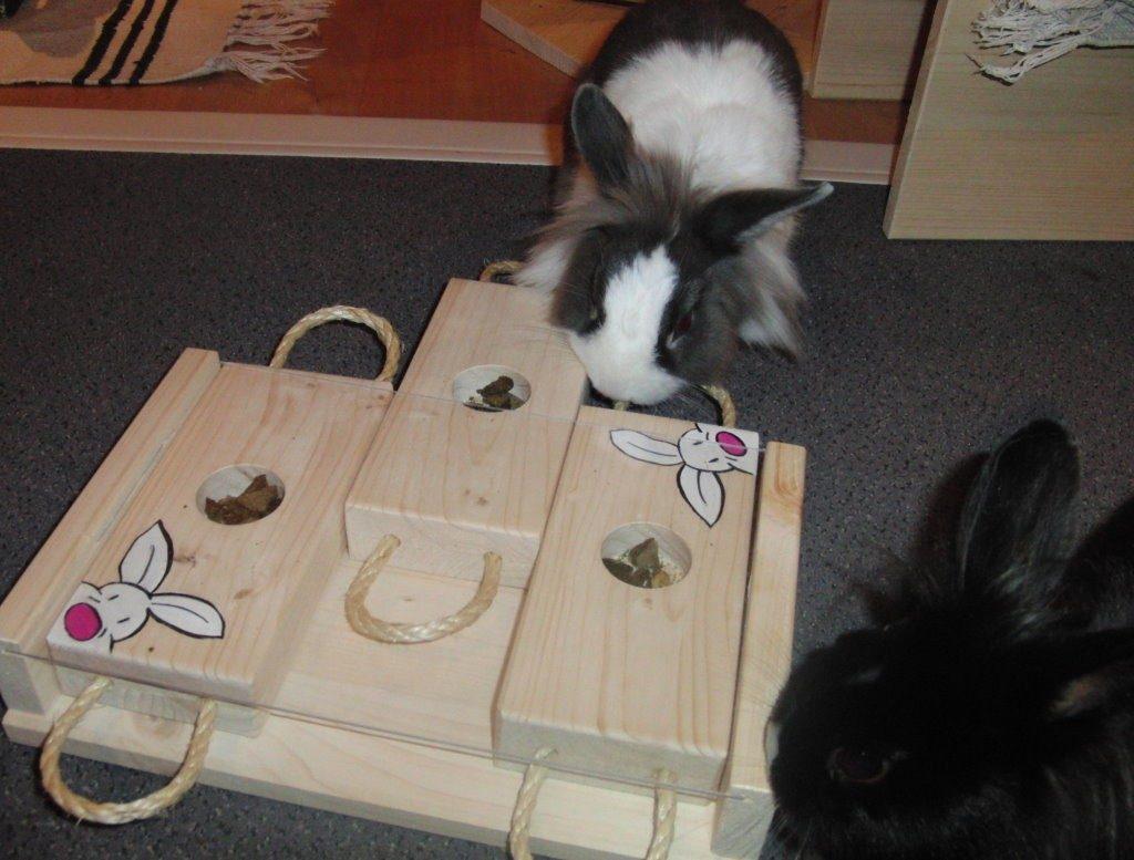 Игрушки для карликовых кроликов