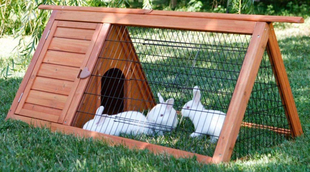 Клетка для декоративных кроликов