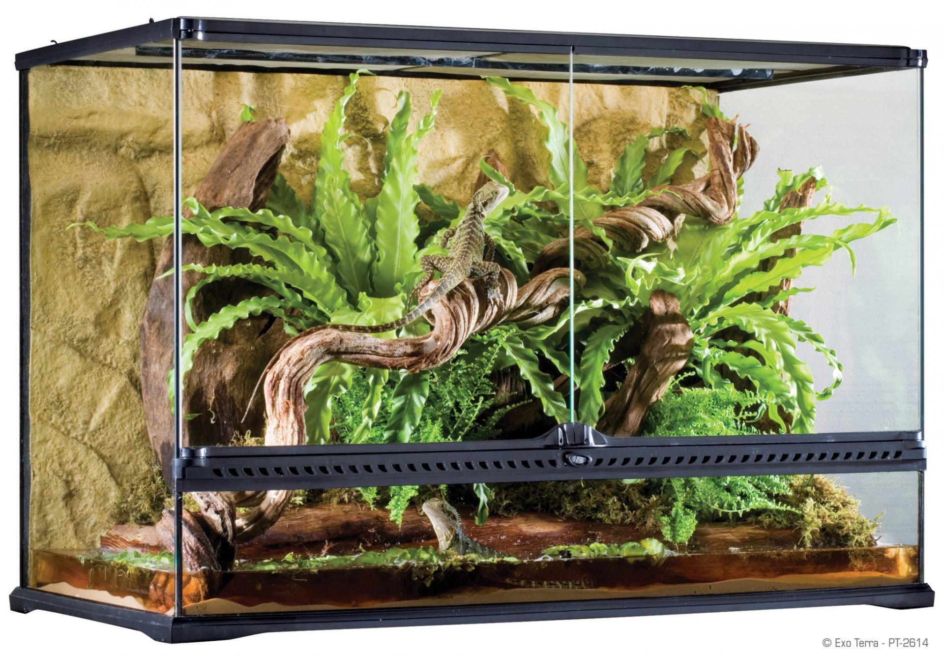 Как сделать домик для ящерицы в домашних условиях