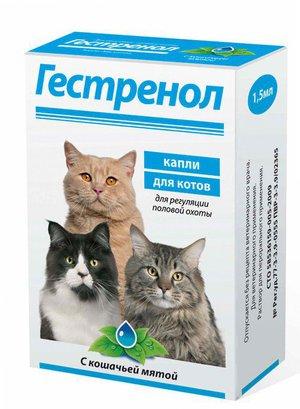 Лекарства для успокоения сексуального влечения у кошек