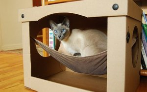 Домик для кошки своими руками: 70 фото-идей 92