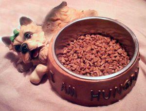 Лучшие корма для собак по мнению ветеринаров