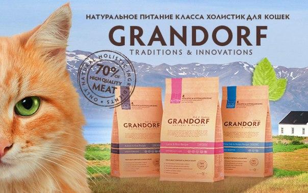 Кошачий корм Grandorf
