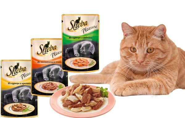 Кошачий корм Sheba