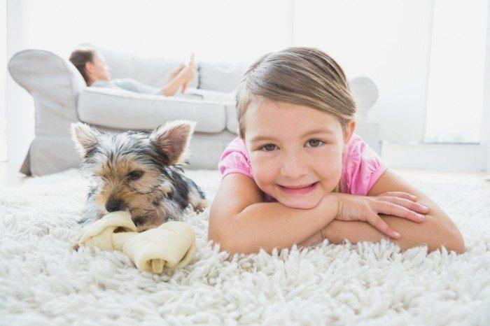 Уговорила родителей купить собаку
