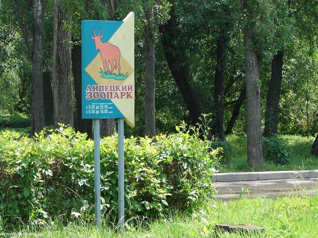 «Мистер и Мисс зоопарк 2018» — конкурс красоты для животных в Липецке