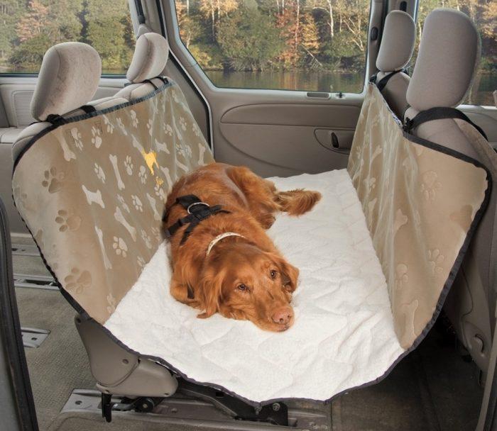 Собака лежит в машине