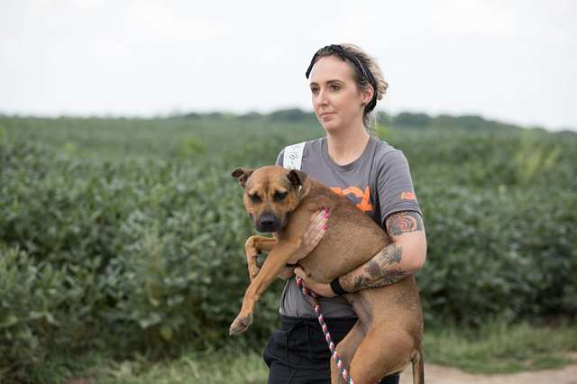45 собак были найдены в Канзасе и спасены сотрудниками ASPCA