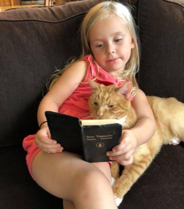 Эбби «читает» Бейли
