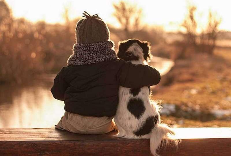 Удивительная дружба животных и детей: самые милые союзы