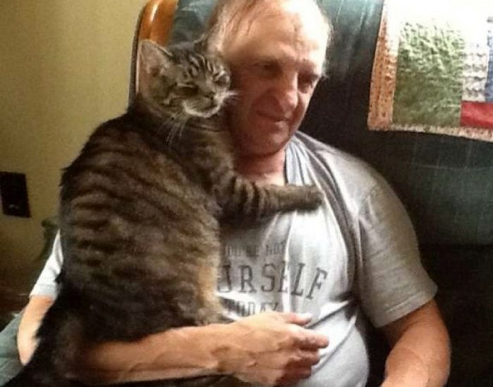 Кот обнимает хозяина