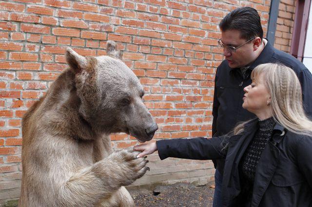 Медведь Степан и дрессировщики Пантелеенко