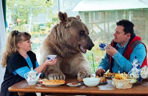 Степан и его семья за столом