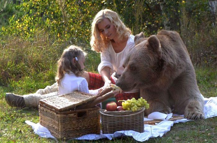 Медведь-фотомодель