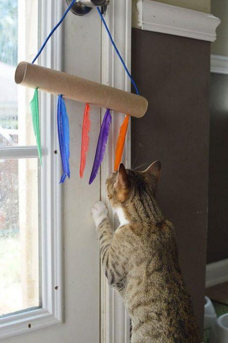 Игрушка для кошки из перьев