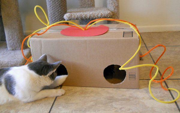 Игрушка для кошки из коробки