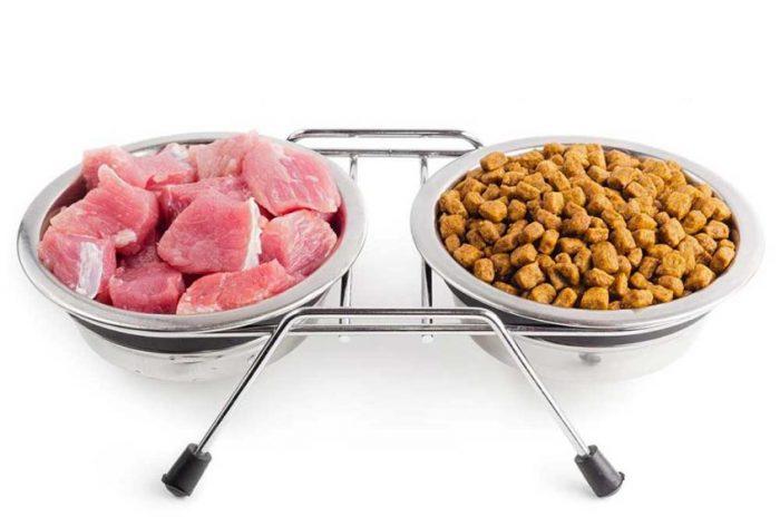 Свежее мясо и сухой корм