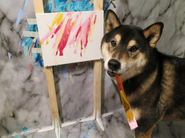 Хантер научился рисовать абстрактные картины, конечно, при помощи лакомств и дрессировок