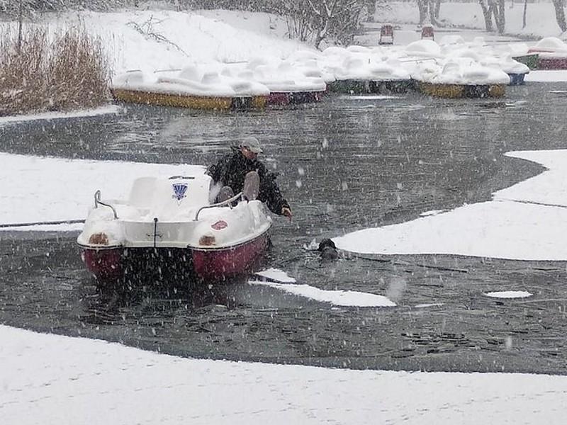 Мужчина помог дворняге выбраться из ледяной ловушки в Симферополе