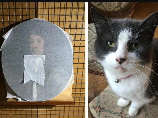 Кошка и картина