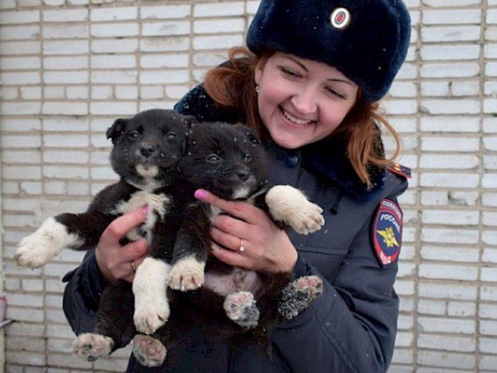 полицейский со щенками