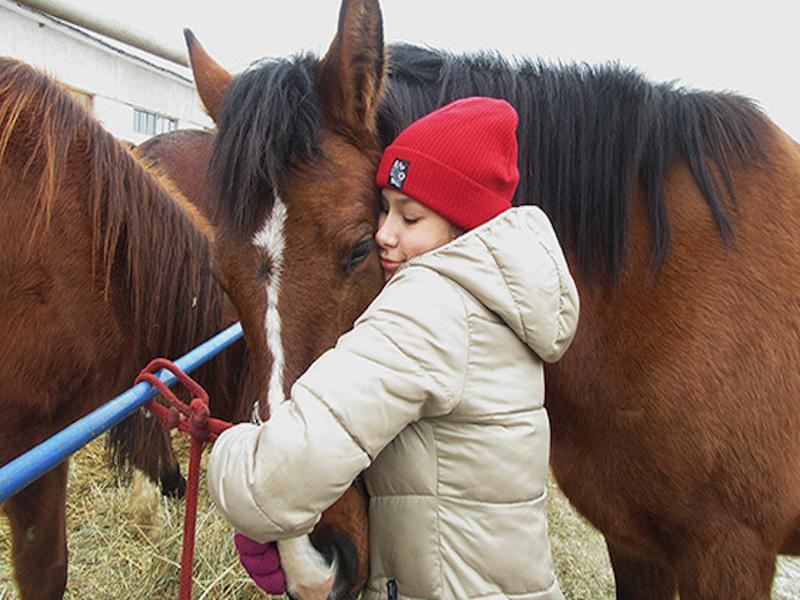 Жительница подмосковной деревни создала приют для лошадей и теперь спасает их  по всей России