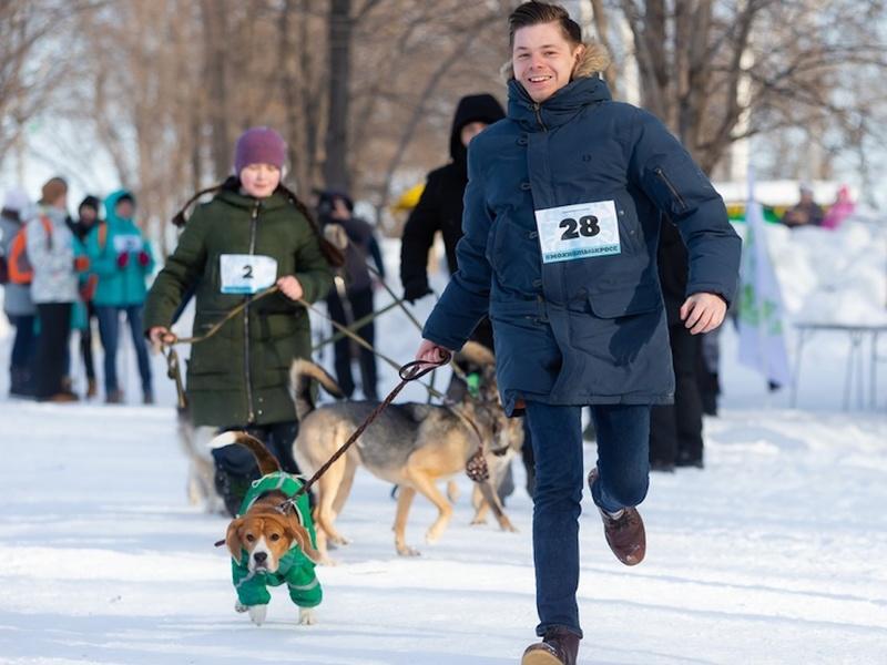 В Томске состоялся благотворительный забег в помощь бездомным животным