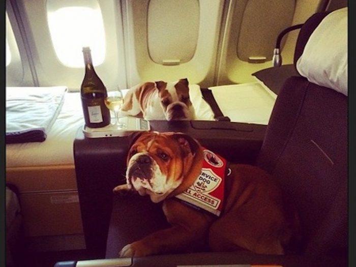 Роско со своей сестрой на частном самолёте