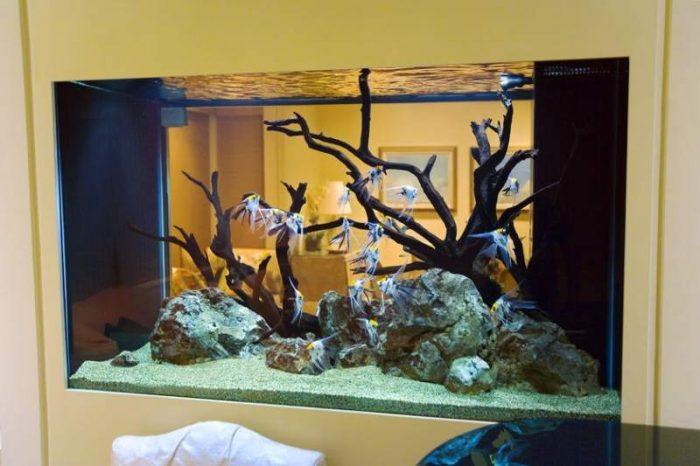 Декор из камней и коряг для аквариума