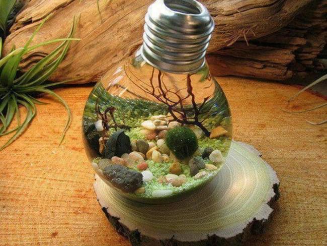 Мини-аквариум в колбе от лампочки