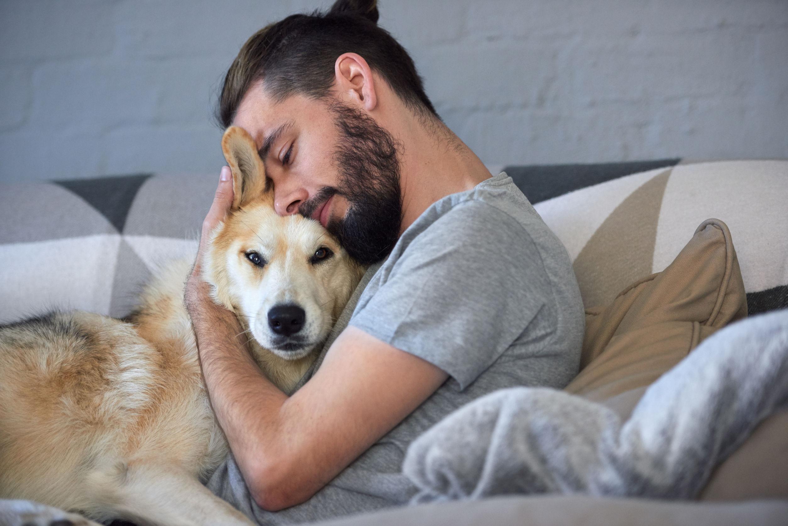 10 самых добрых пород собак, которые станут отличными друзьями