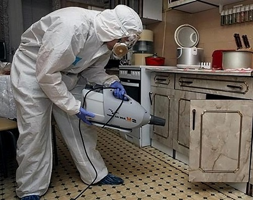 Работник СЭС обрабатывает шкафчик на кухне