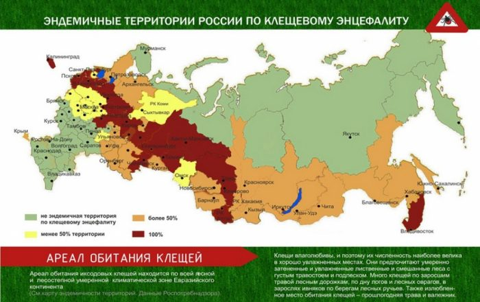 Регионы России, опасные в отношении клещевого энцефалита