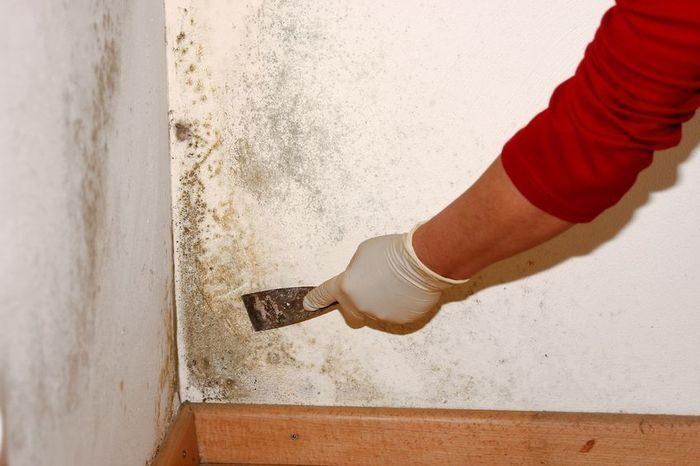 Очистка стены шпателем