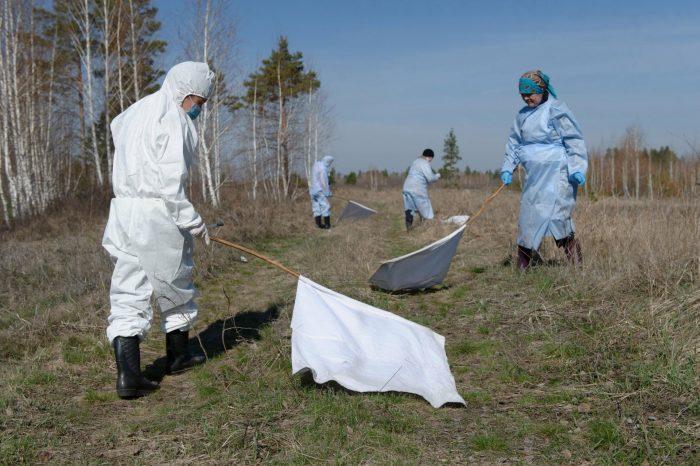 Люди в защитной одежде проверяют наличие клещей на территории