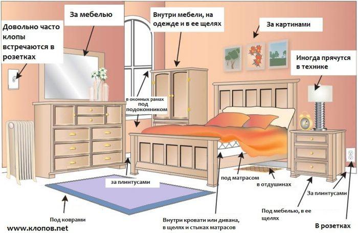 Схематичное изображение комнаты