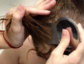 Как избавиться от вшей и гнид?