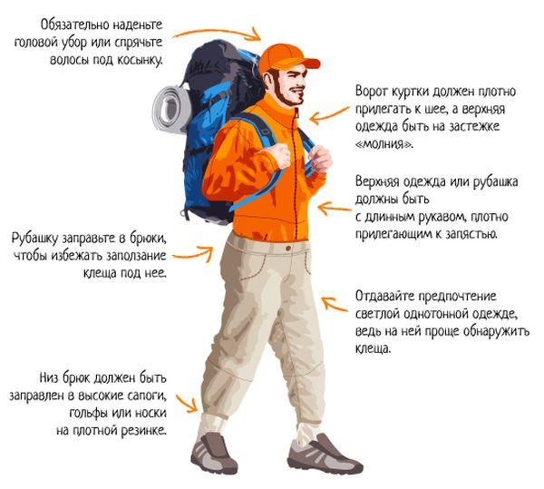 Пример правильной одежды для защиты от клещей