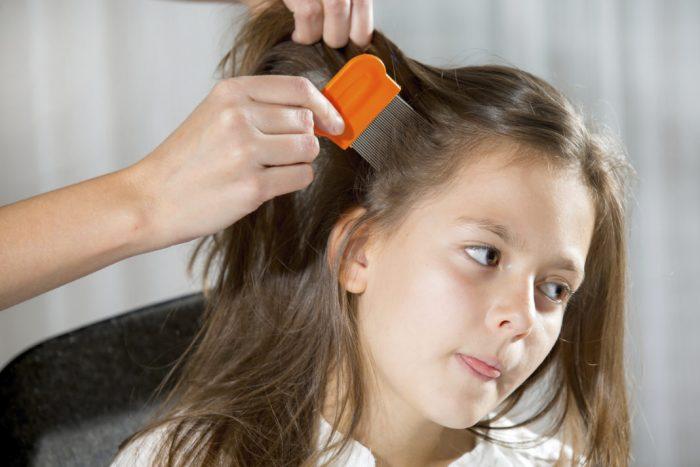 Девочку расчёсывают гребнем