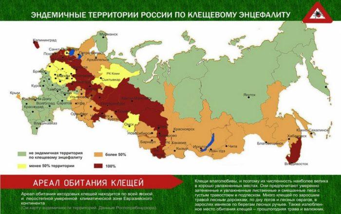 Карта распространения клещевого энцефалита