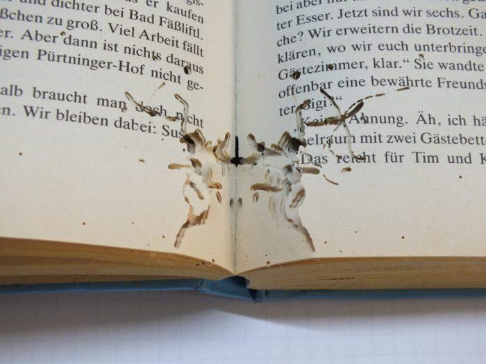 Чешуйница вредит книгам