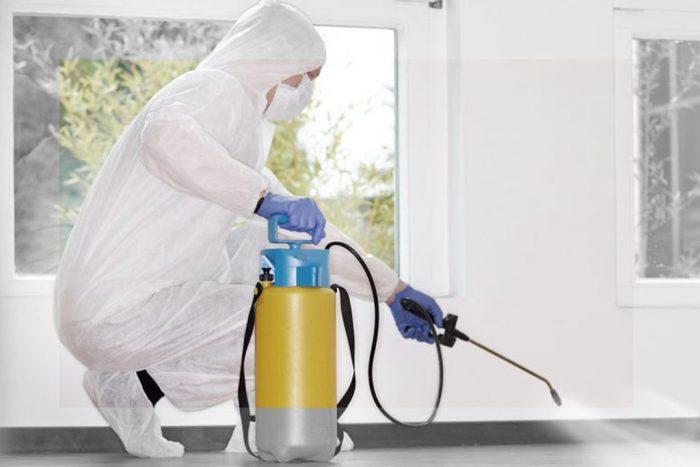 Дезинсектор распыляет химическое средство в помещении