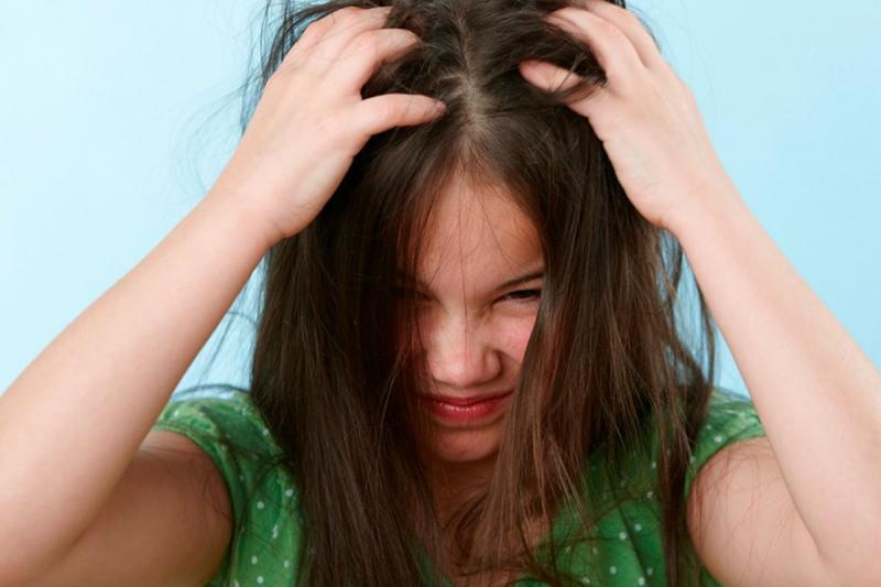 Детский педикулёз: откуда берутся вши, как их распознать и какими способами лечить